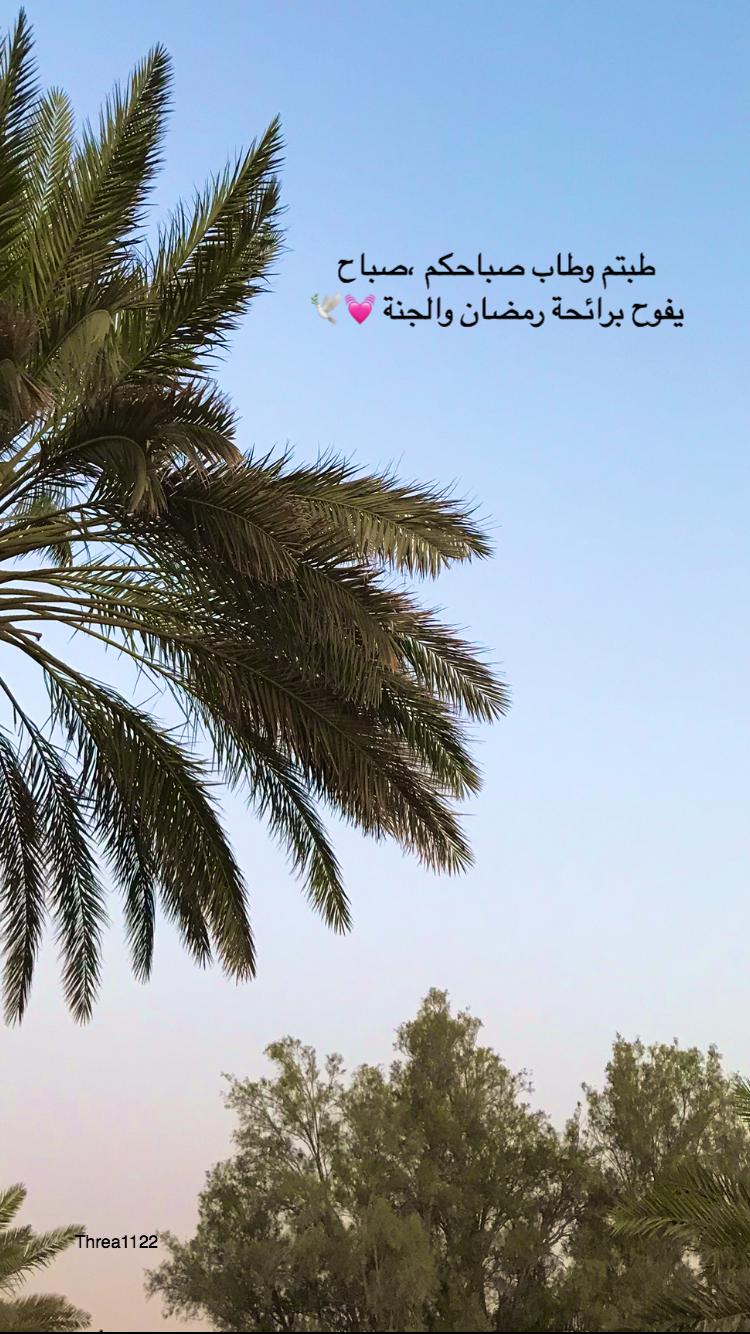 ٣ ومضان ١ رمضان صباح أول يوم من رمضان يارب اجعلها أيام ا تحمل معها الأخبار السعيدة والس ارة وفاتحة خير على الجميع يارب تقبل Beach Outdoor Water