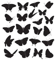 Butterflies Black Silhouettes On White Background Stock Vector (Royalty Free) 106946471