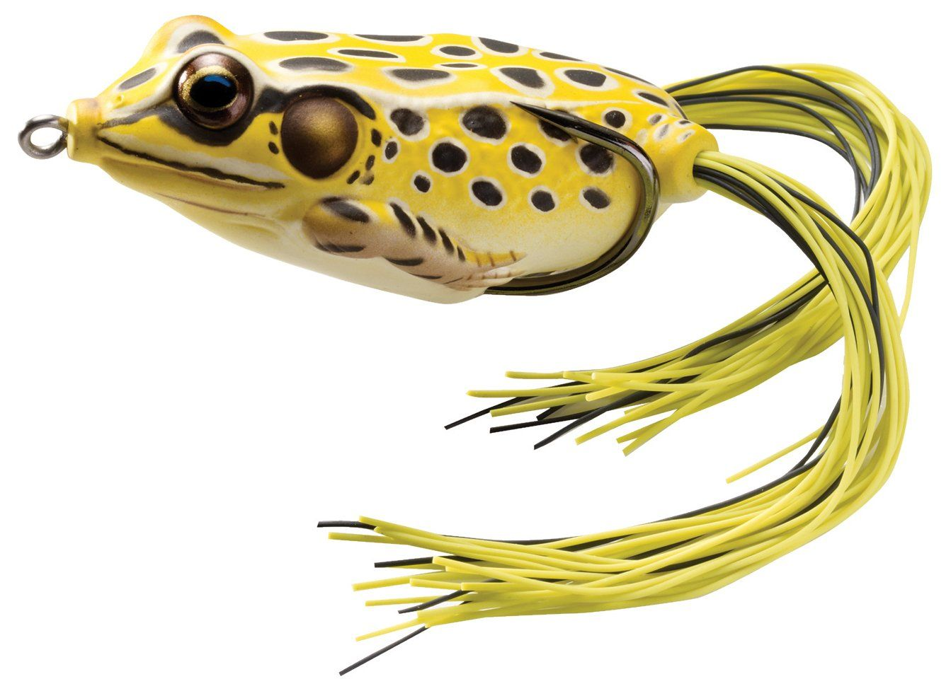 top 5 largemouth bass fishing lures bass fishing bass