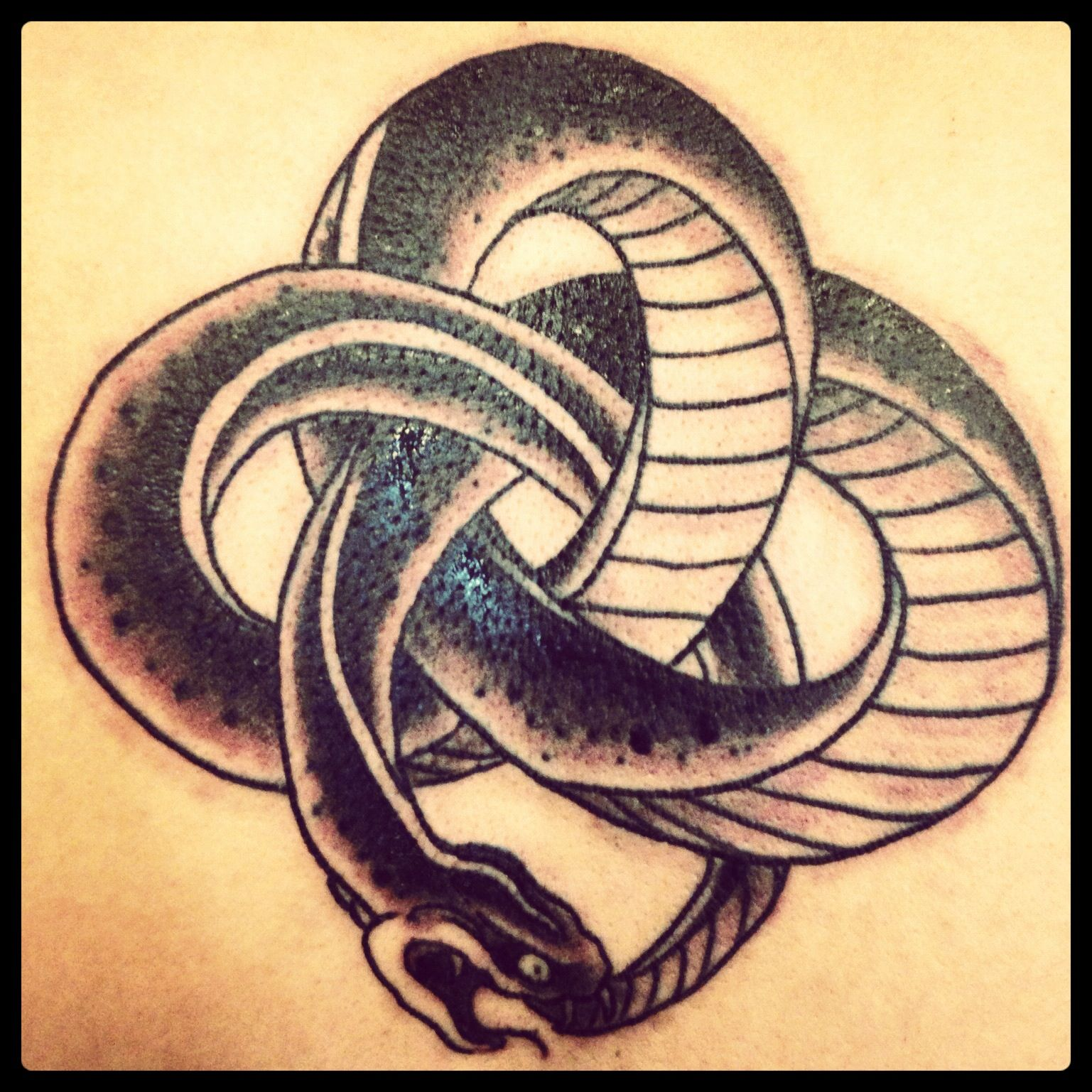 Snake ouroboros tattoo tattoos pinterest ouroboros for Snake eating itself tattoo
