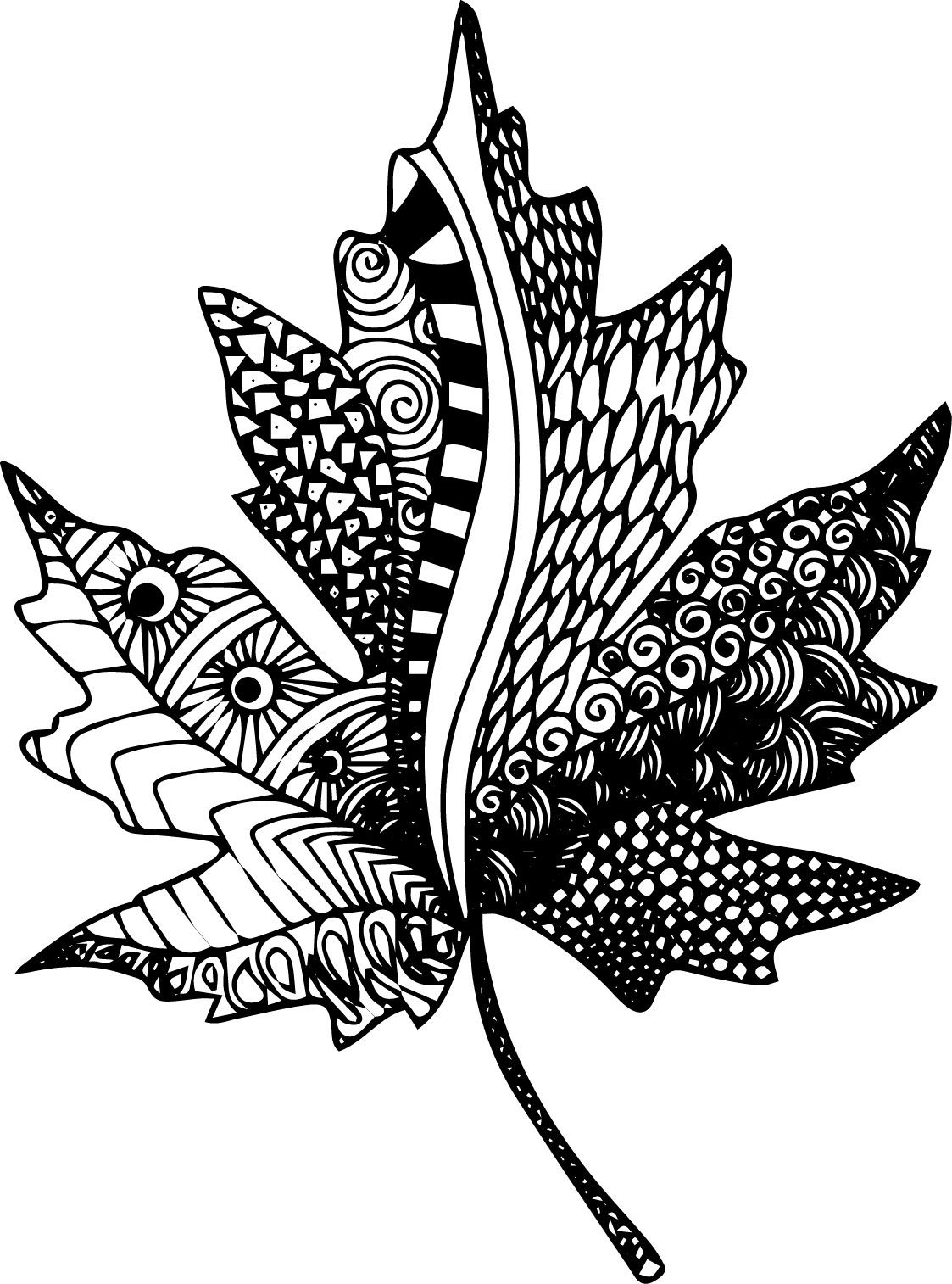 Free Zentangle Coloring Pages Image Result For Maple Leaf