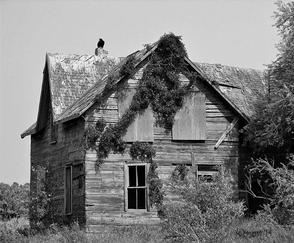 Old farm house, Kinloss, Ontario by pearcedc