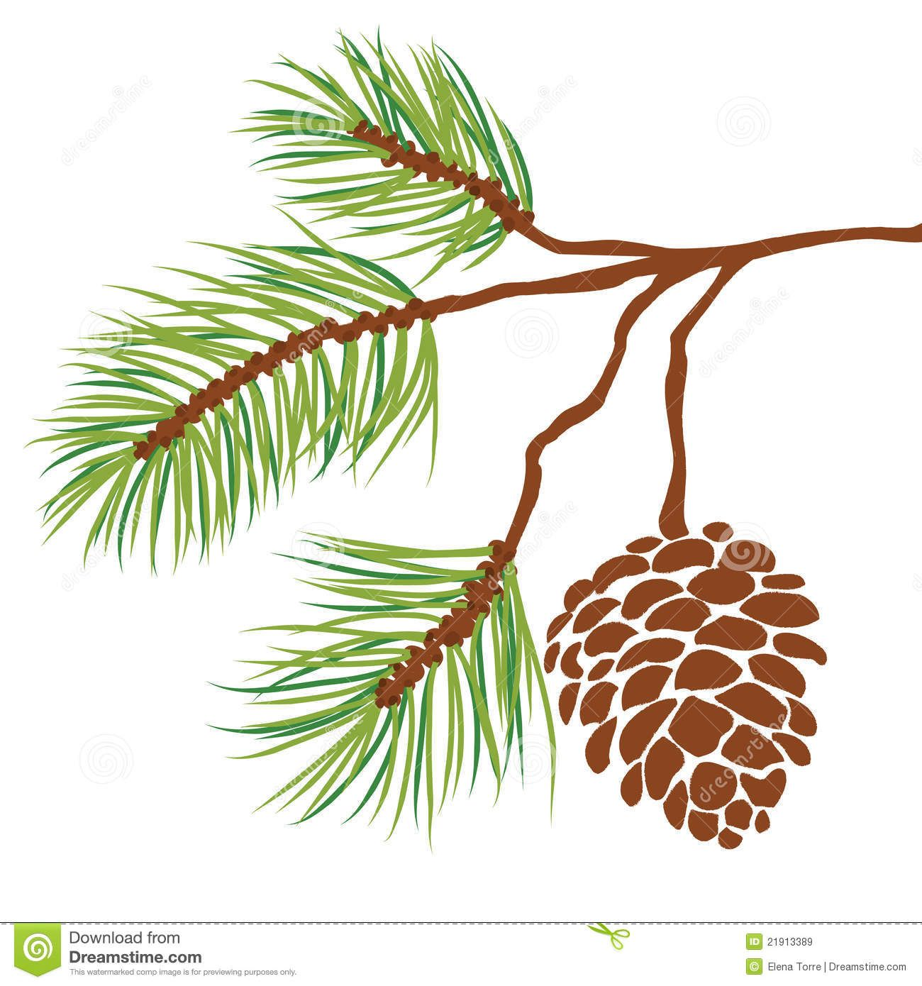 Pine Tree Branch And Cone Vector Tree Stencil Pine Tree Silhouette Tree Art
