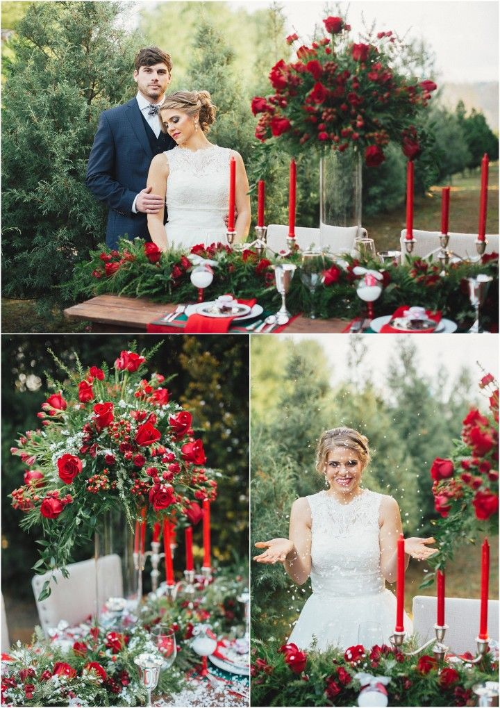 Christmas Tree Farm Wedding Inspiration Knoxville Tn Wedding Farm Wedding Holiday Wedding