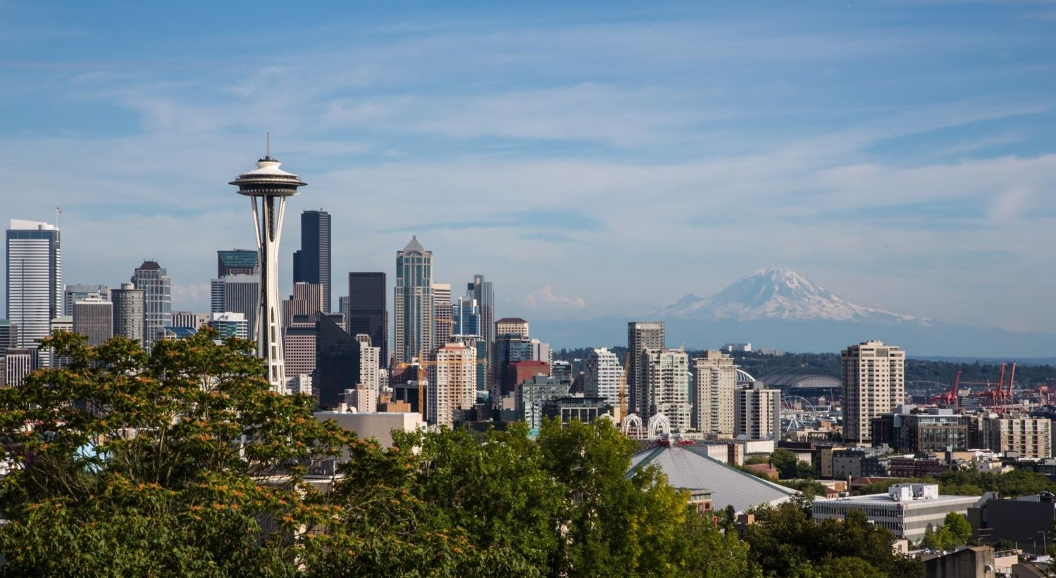 Seattle & Bellevue Acupuncture (With images)   Seattle ...