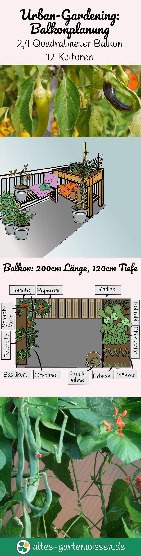Urban Gardening: Balkonplanung - Viele Pflanzen auf einem kleinen Balkon