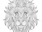 Display image coloriage-adulte-tete-lion-3