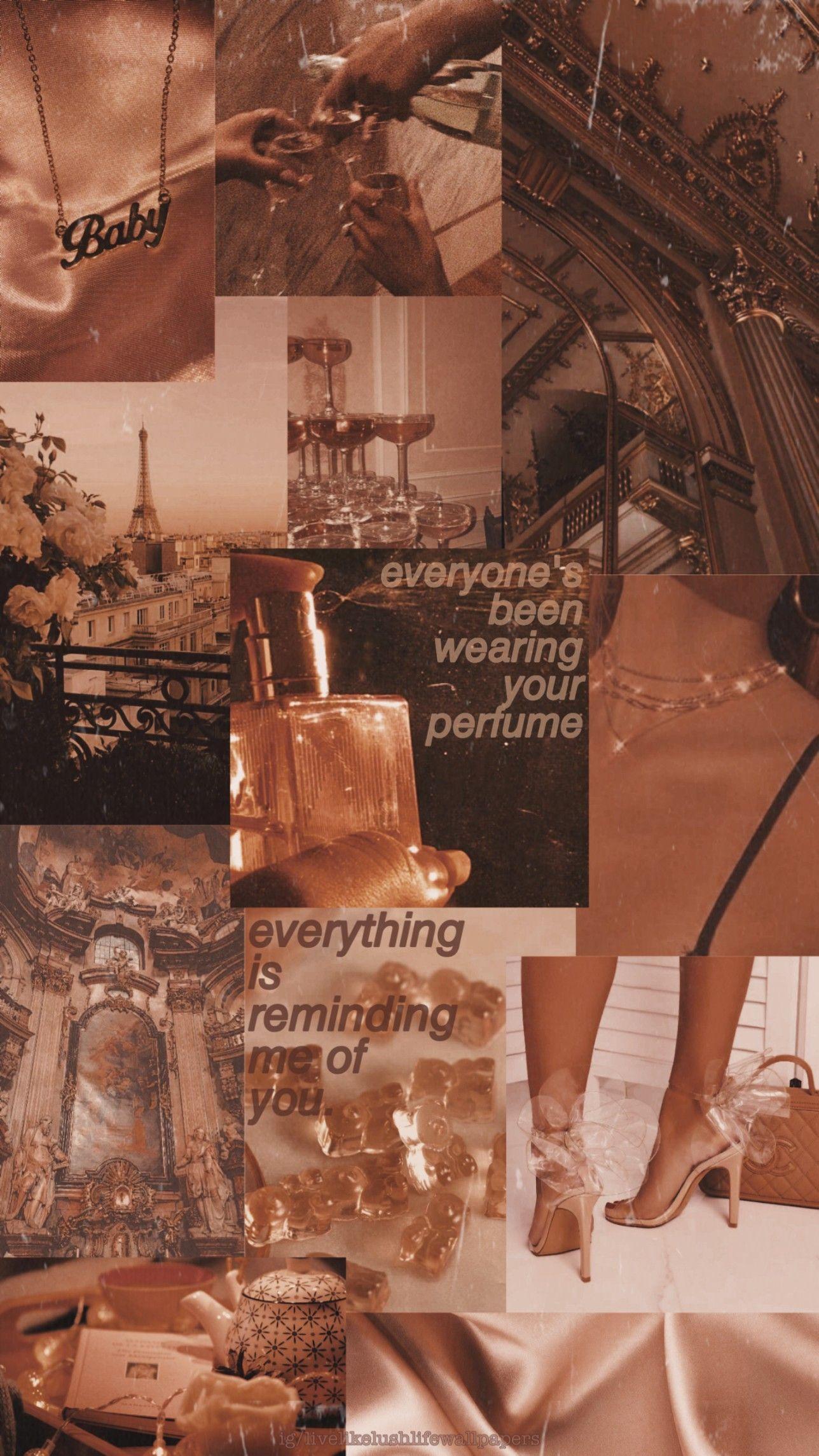 Zara Larsson Aesthetic Wallpaper