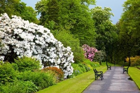 Gardens Open To The Public In Northern Ireland