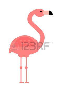 cartoon flamingo Pink flamingo and wild flamingo animal Flamingo