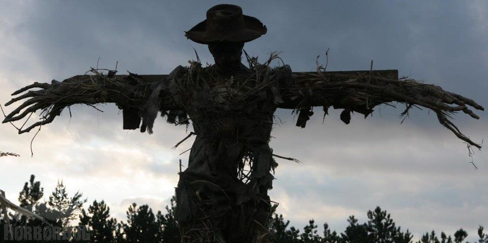 Image result for images of scarecrows