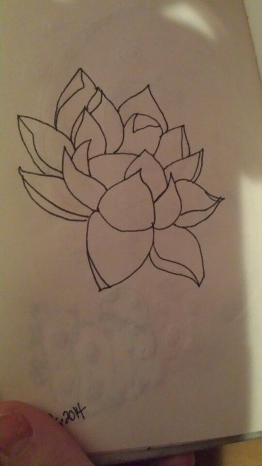 Lotus flower my attempts at sketching pinterest lotus flower lotus flower mightylinksfo