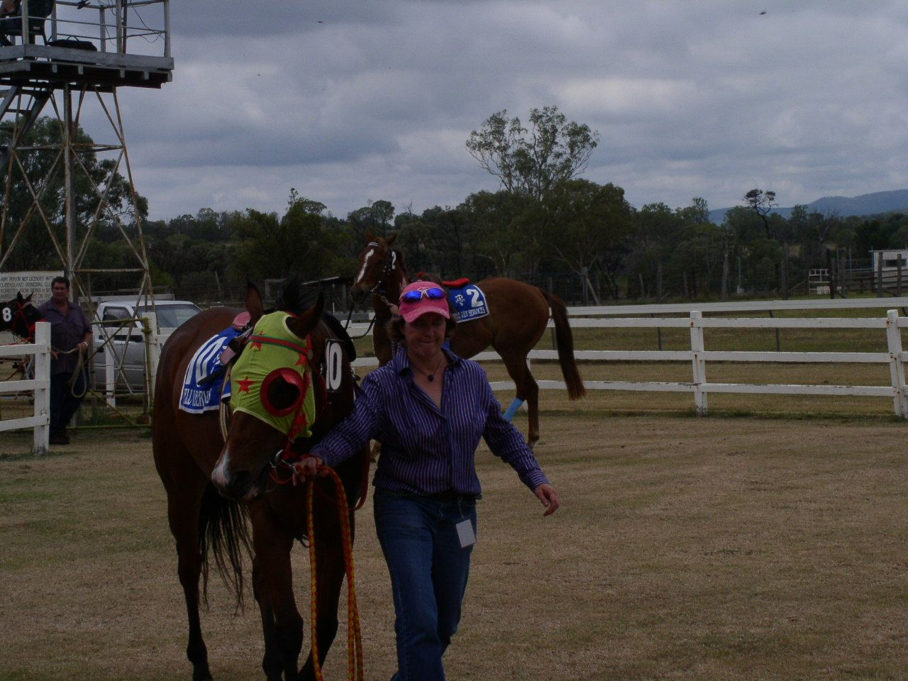 horse racing http//sportsbettingarbitrage.in Betting