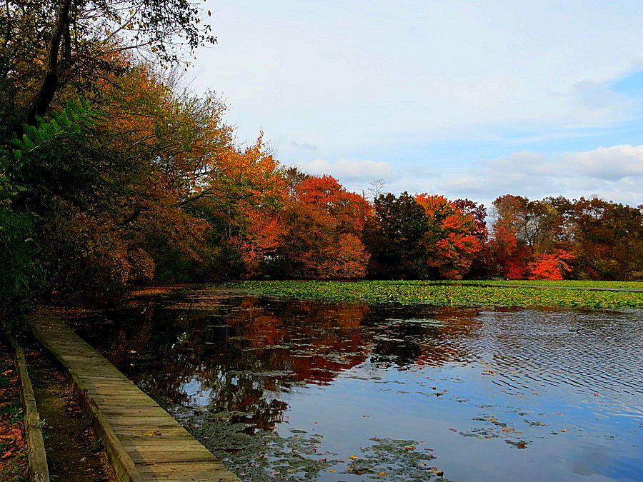 Fishing Pier At Twin Lakes Preserve Wantagh New York October 27