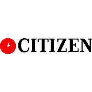Citizen   Watches logo, Brand names, Logo branding