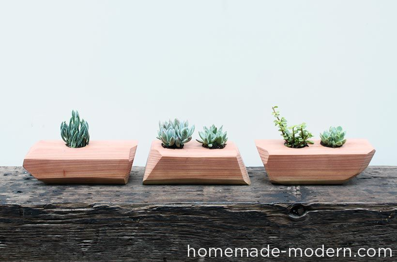 Make a modern wood planter for succulents in a few simple steps with homemade modern