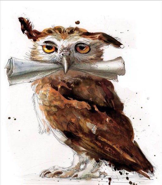 Новое лицо Гарри Поттера в 2020 г. | Иллюстрации гарри ...