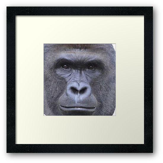 Harambe Harambe Gorilla Face Stickers