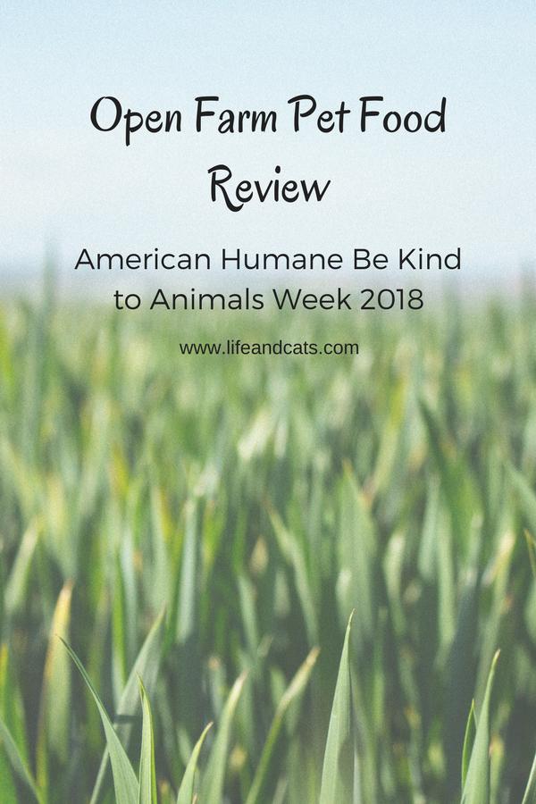 Open Farm Pet Food Review Pinterest Friendly Image What