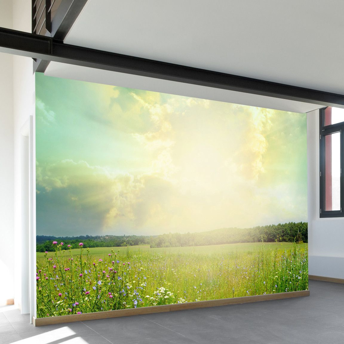 Field of Dreams Wall Mural | Wall murals, Fields and Walls