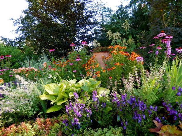 Nothing Vanilla to See Here: Our summer border is a riot of color that beckons all visitors to take a closer look. Here's echinacea, hosta, heuchera, helianthus and asclepia getting their groove back after a LONG Chicago winter. What color scheme makes your heart sing?