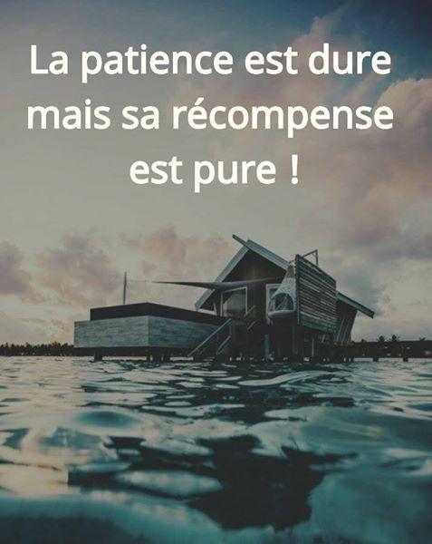 Citations et proverbes français à lire. Une nouvelle citation