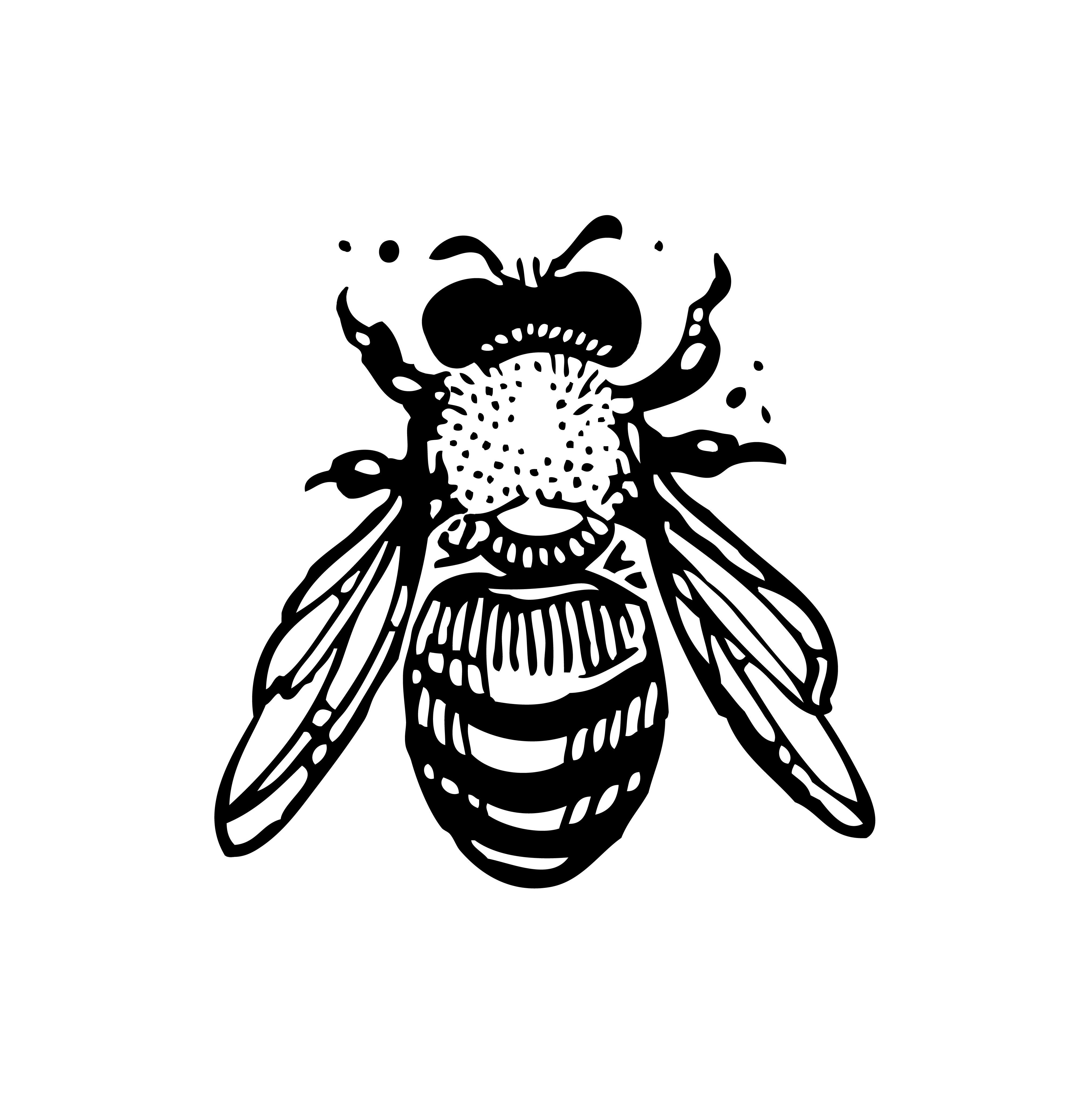 Bumble Bee Honey Bee Vector Stencil Art In Black White Bee Stencil Bee Painting Bee Illustration