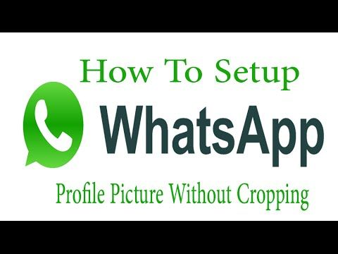How To Set A Full Size Profile Picture On Watsapp Set With