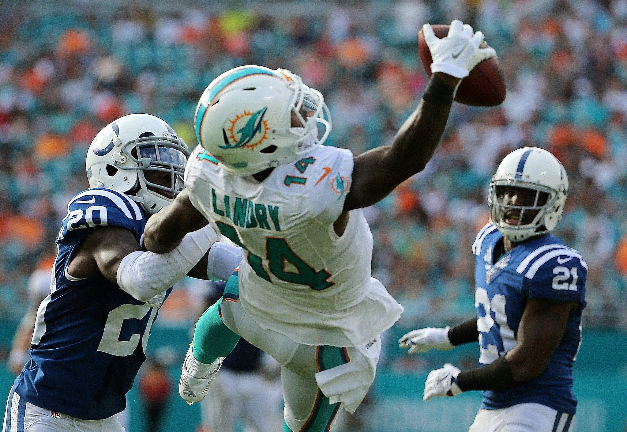 miami dolphins wallpaper android miami dolphins quotes