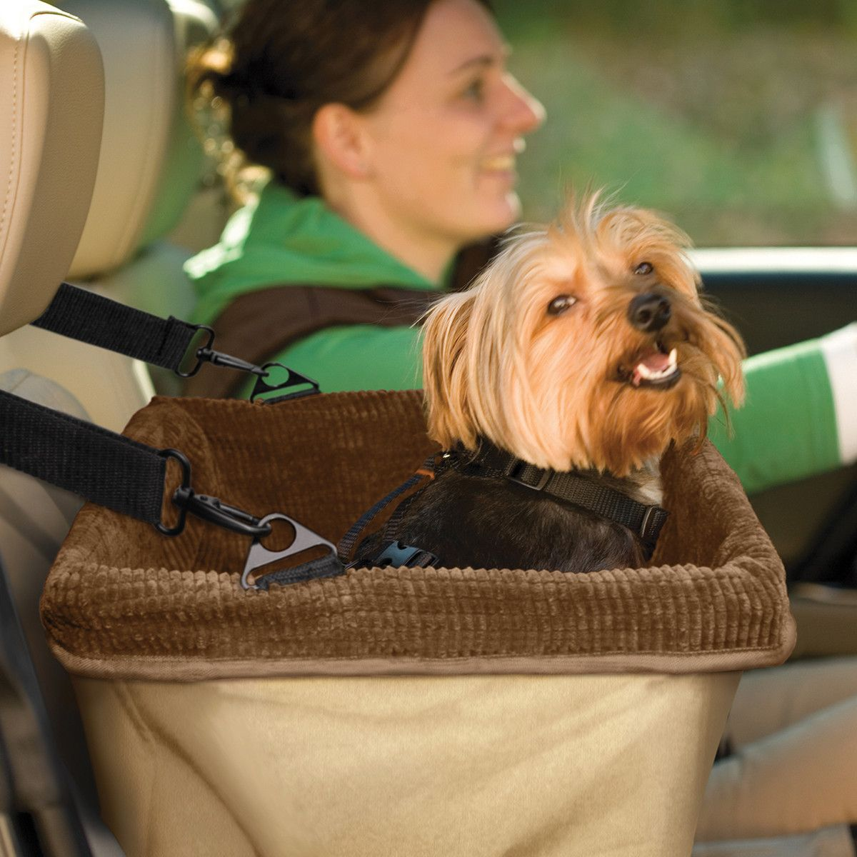The best part of a puppy's car ride is the view—help him out with the Skybox Booster Seat. With a washable padded liner and metal supports for structural integrity, this item from Kurgo makes a small dog's car ride that much safer, too.