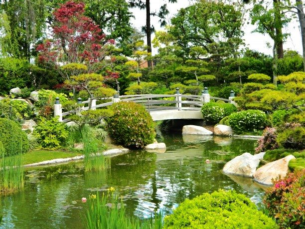 Japanese Gardens California State University Of Long Beach Places To Go In And Around