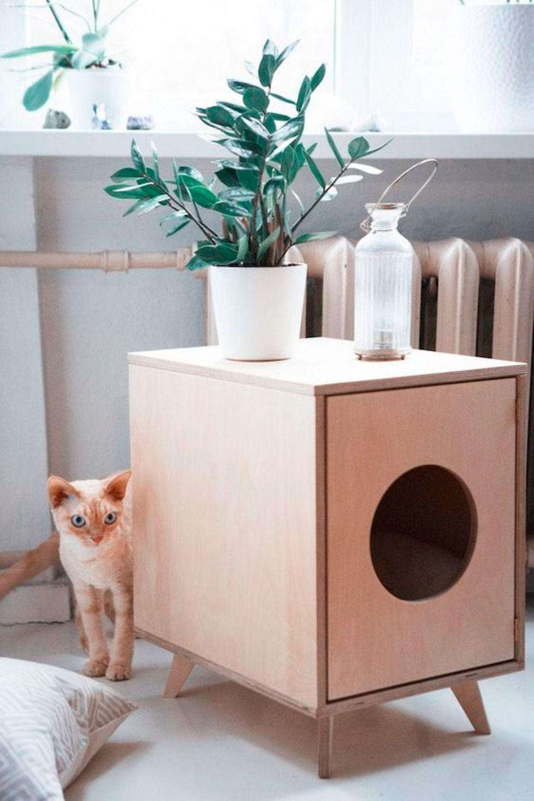 Diervriendelijk en leuk interieur   Katten   Pinterest   Cat ...
