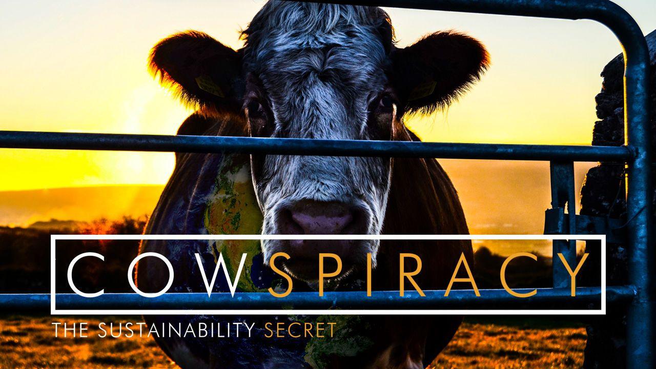 """Cowspiracy"" 1hr 30m (2014) Via New On Netflix USA"
