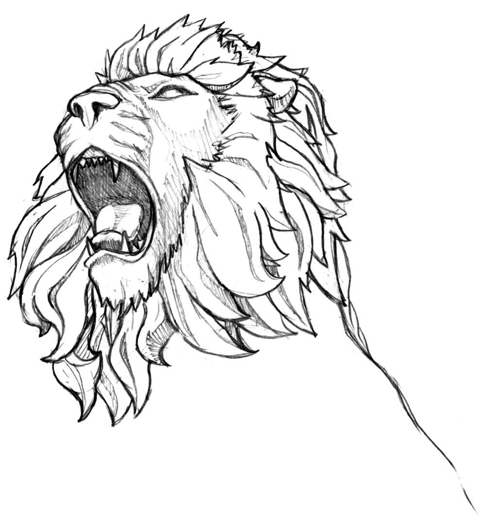 Angry Lion Drawings Pencil Simple