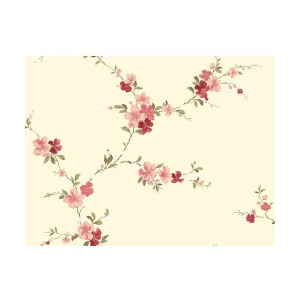York Wallcoverings JG0730 Red Book Blossom Trail Wallpaper Cream Home ($63) ❤ liked on Polyvore featuring home, home decor, wallpaper, cream, red rose wallpaper, flower pattern wallpaper, flower stem, pattern wallpaper and rose wallpaper