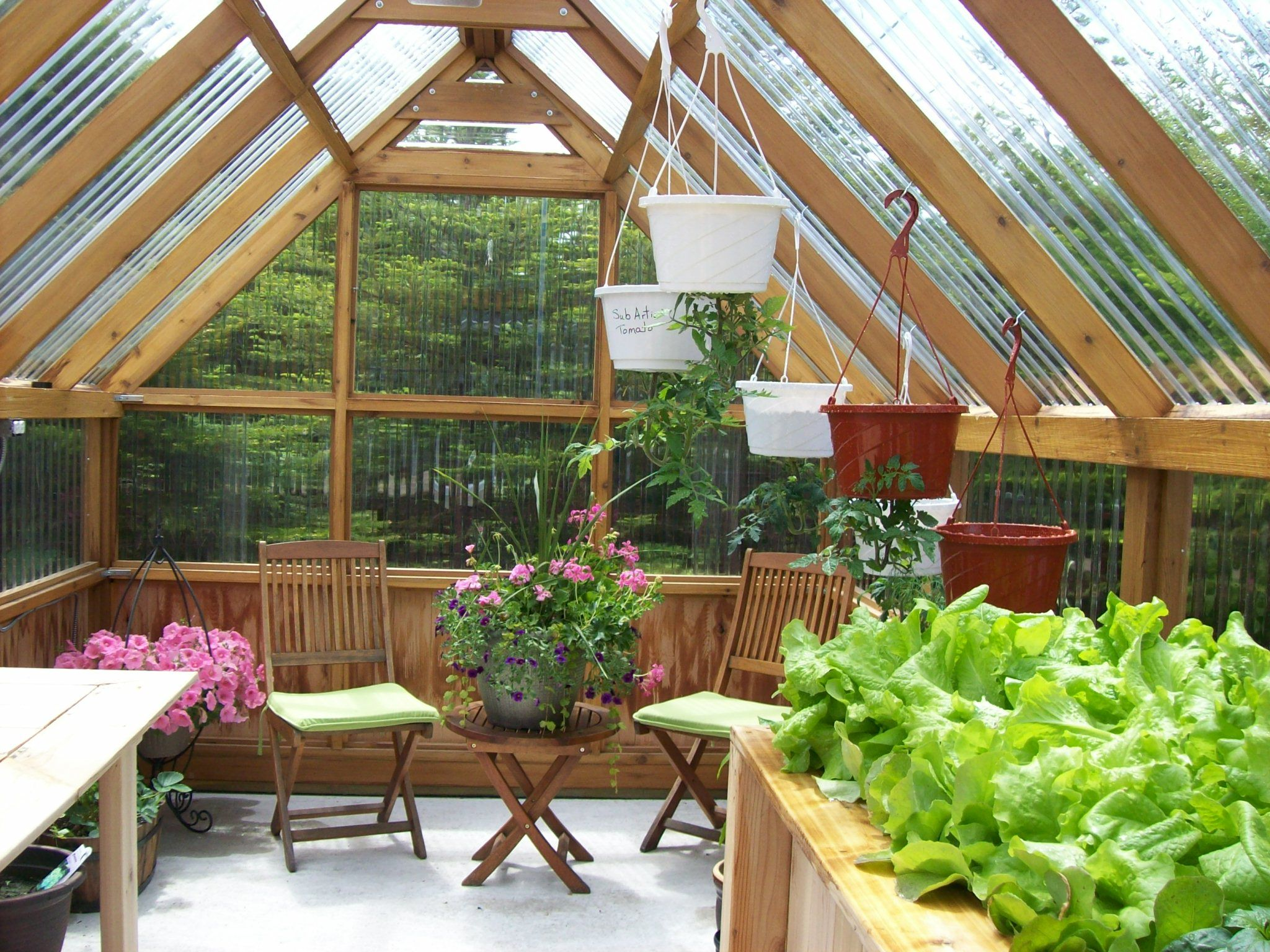 Inside Greenhouse From Front Door