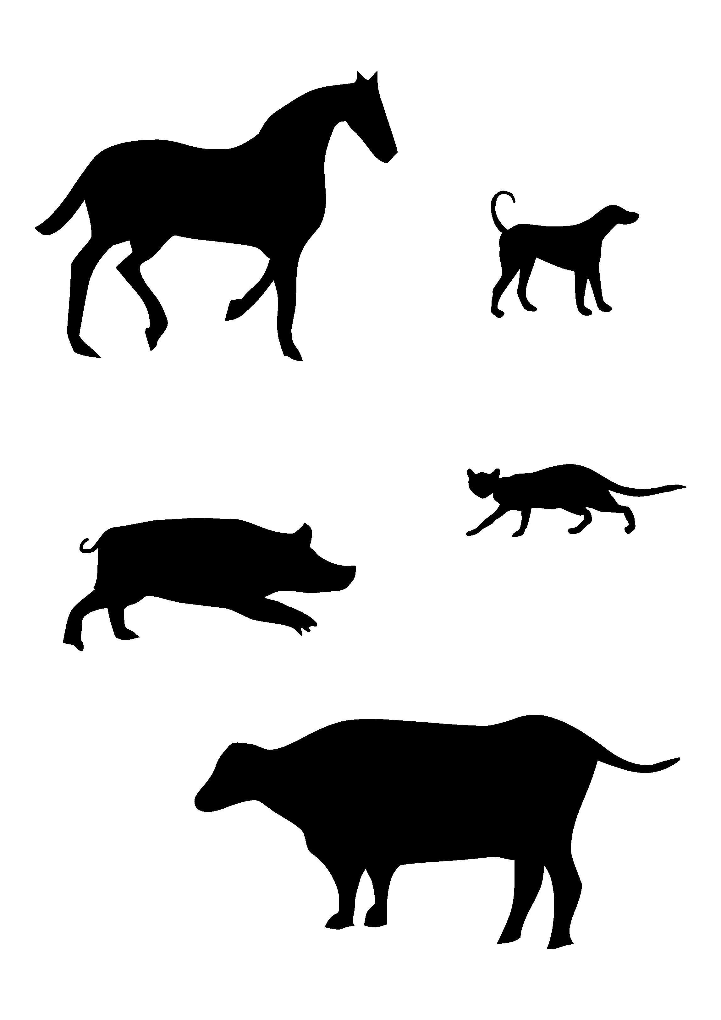 почему используются черно-белые изображения для детей: 10 ...
