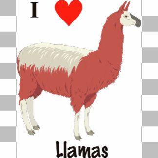 I love Llamas.jpg