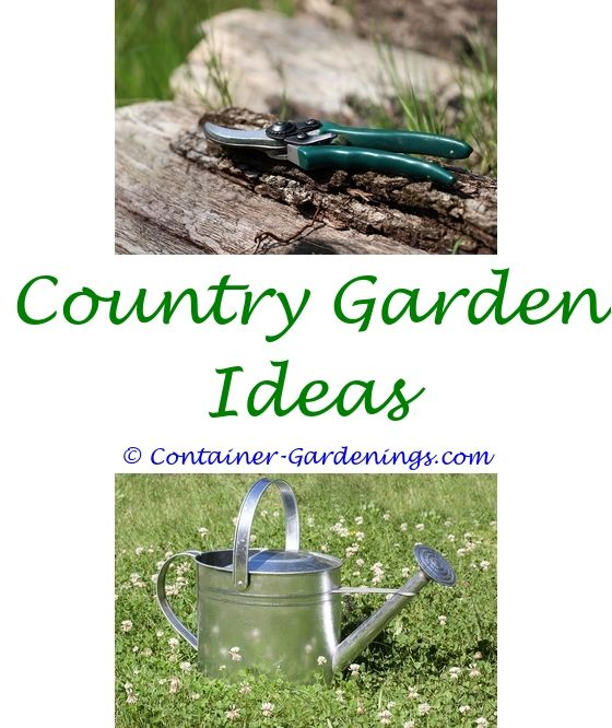 Best Way To Make A Vegetable Garden