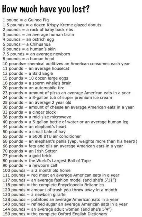 Weight loss chart funniest thing ever charts skinny rules also best images rh pinterest