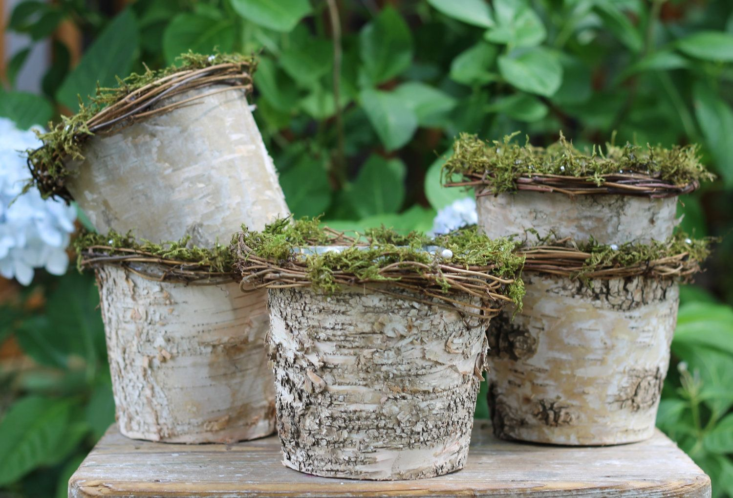 Love these natural birch bark flower pot vase lined with