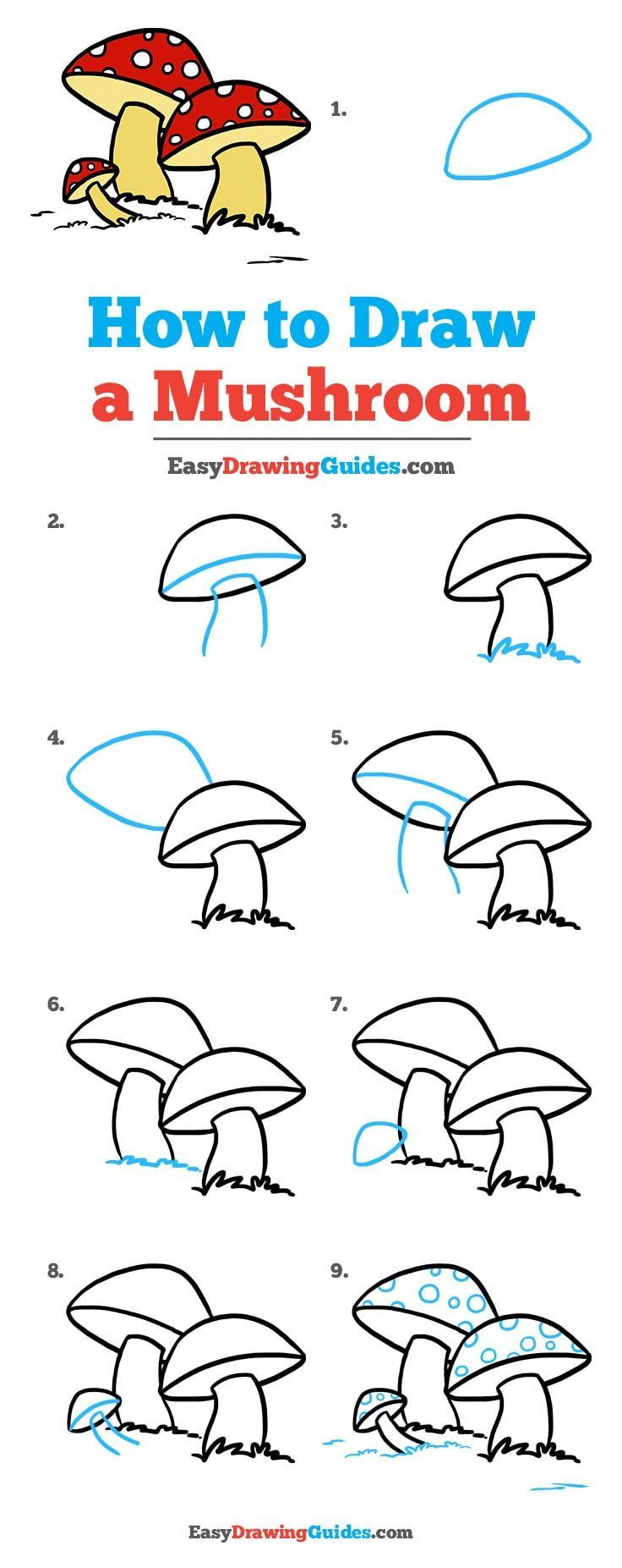 Photo of How to draw a mushroom – #