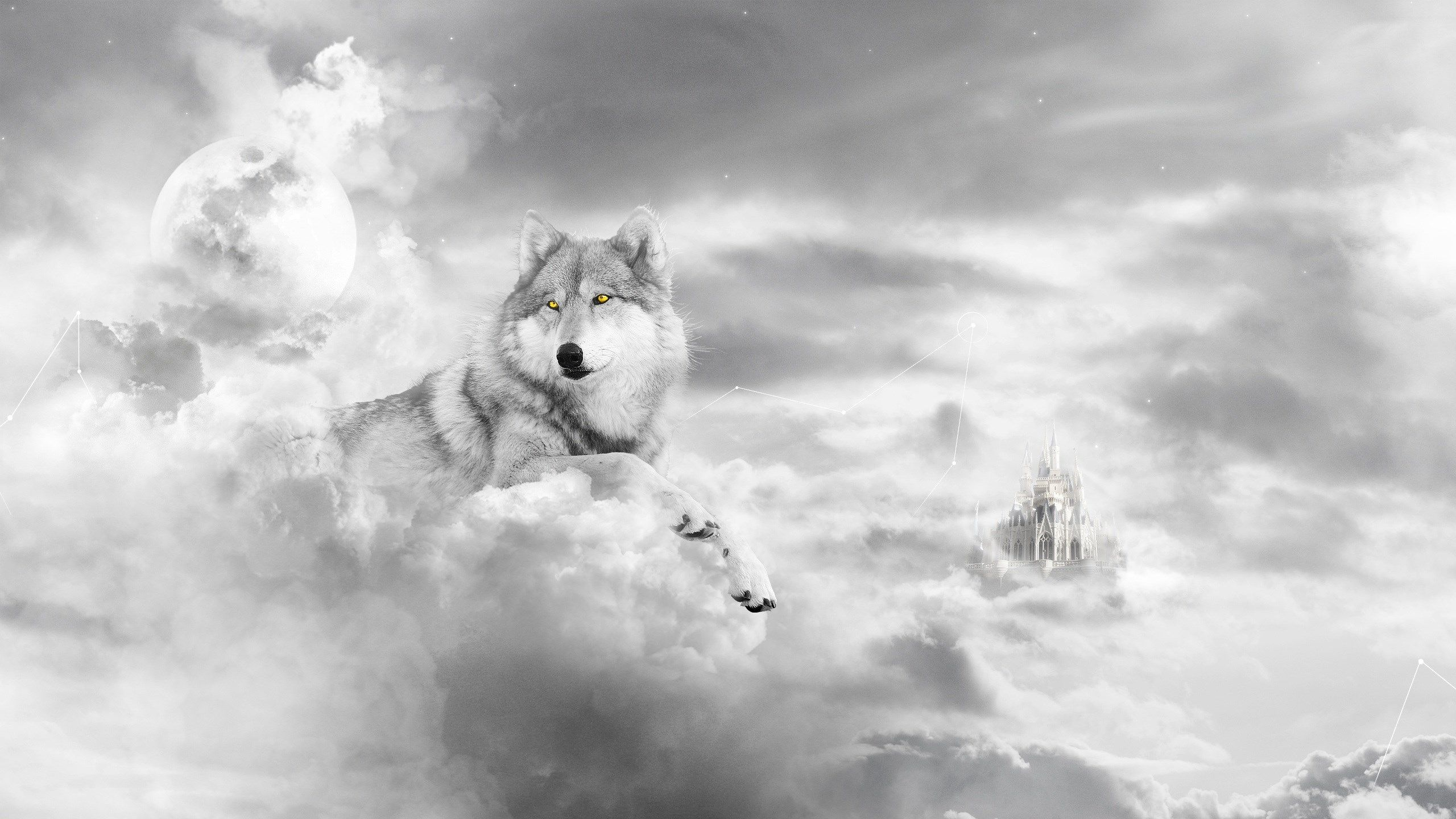 Wolf Wallpaper Widescreen Retina Imac By Wade Walls 2017 03 22