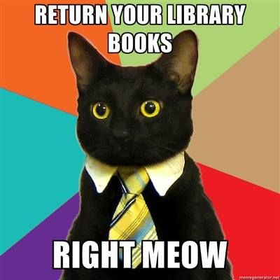 Image result for return your library books meow