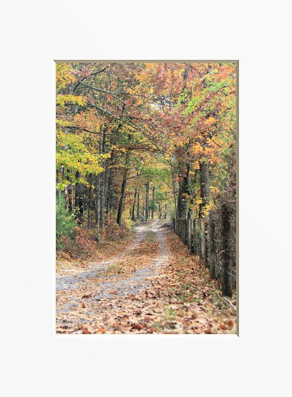 Fall Country Road Photograph. Woodland Path Home by NJSimages