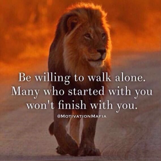 I can walk alone     | leo | Lion quotes, Morals quotes