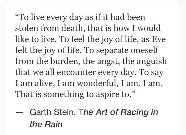 Art Of Racing In The Rain Quotes