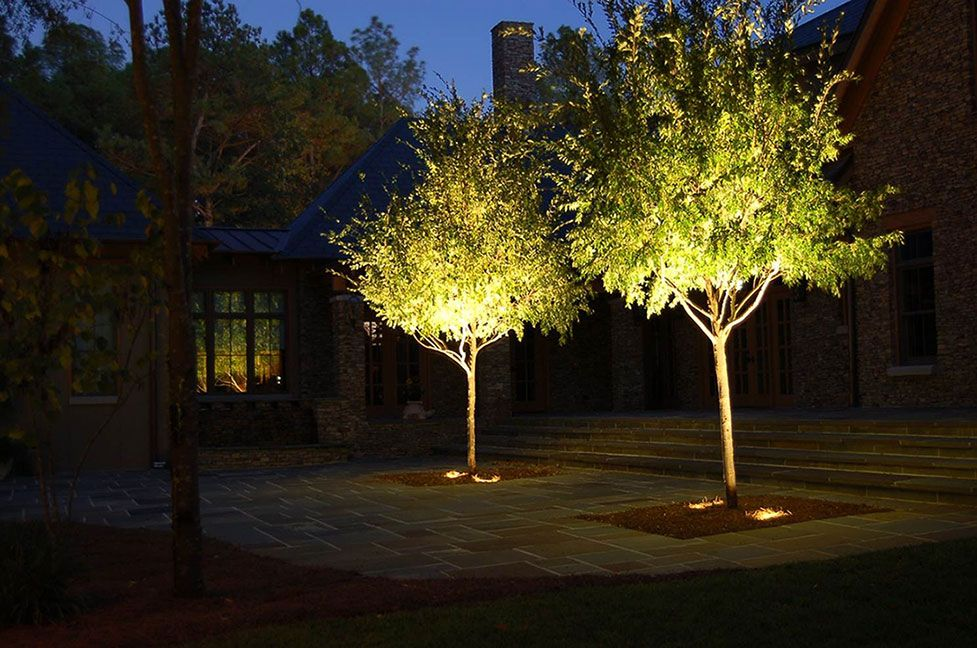 Tree Lighting Up Lighting For Details And Additional Information On Purchasing Landscapeligh Landscape Lighting Outdoor Landscape Lighting Exterior Lighting