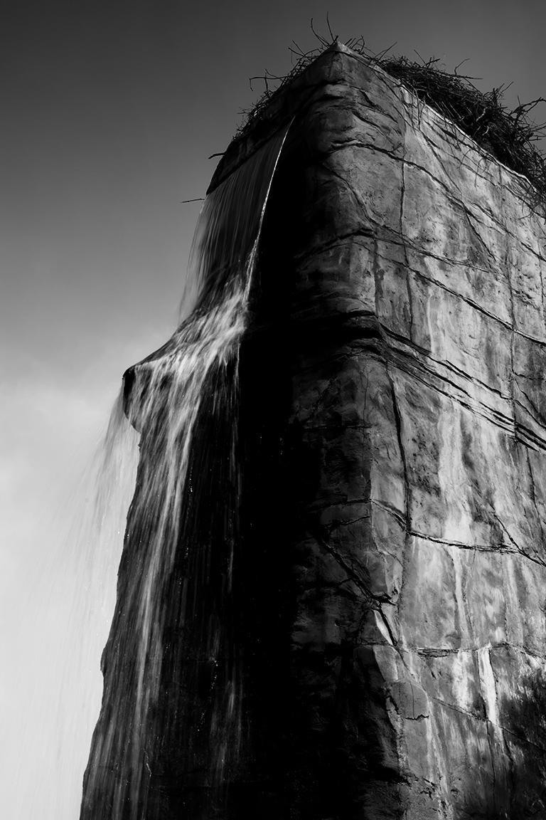 Bärenburg wird zum Polarium | Unterstütze auch du den Zoo