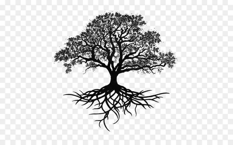 Image Result For Oak Tree Vector Art Oak Tree Tattoo Live Oak Tree Tattoo Tree Roots Tattoo